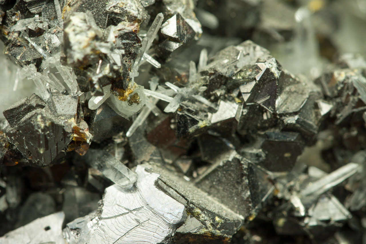 Molybdenum and Zinc